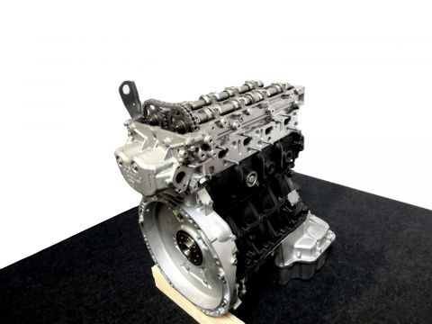 Mercedes Benz S Klasse W221 250CDI 651.961 Motor